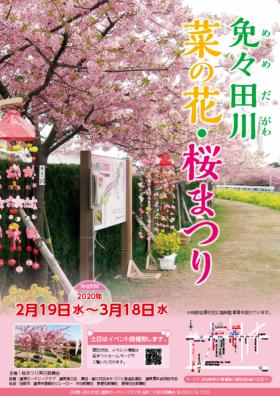 2020年「免々田川 菜の花・桜まつり」